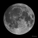 The Hunter's Moon 2018,                                Damien Cannane
