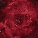 Rosette in Ha,                                equinoxx