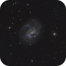 NGC 4395 - spiral galaxy in Canes Venatici,                                Michael S.