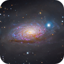 What the Crop?! M63 at 400m Focal length,                                Julian Shroff