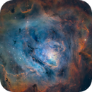 M8 - SHO,                                Lee Borsboom