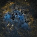 IC 410 - Tadpole Nebula (SHO),                                Frank Breslawski