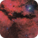 IC 1318 - The Sadir Region in RBG+HaLum (the dark structure view),                                David McClain