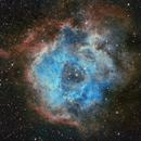 SH2-275 Rosette nebula,                                Piet Vanneste