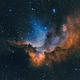 Wizard nebula - NGC 7380,                                Peter Komatović