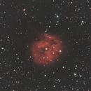 IC 5146,                                HansTrapp