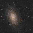 Messier 33 vom Almberg,                                Gottfried Meissner