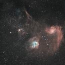 IC 410, IC 405, IC 417, NGC 1893, NGC 1931, M36, M38, etc,                                Steven Bellavia