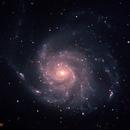 M101,                                Matt Harbison