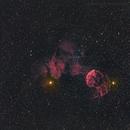 IC 443,                                Tragoolchitr Jittasaiyapan