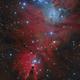 NGC2264 Cone Nebula and Fox Fur,                                Barry Wilson