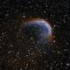 Sh2-188 - The Dolphin Nebula,                                Chris Massa
