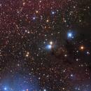 The Area Around NGC2245,                                Siyuan Niu