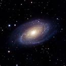 M81,                                Jan Schneidler