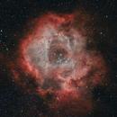 The Rosette Nebula,                                Gregk