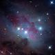 NGC 1977:  Runningman Nebula,                                Michael Caligiuri