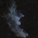IC 2118 Witch Head Nebula,                                Arvid Emtegren