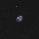 M1 - The Crab Nebula in SHO,                                Scotty Bishop