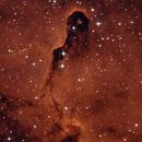 IC1396 Elephant's Trunk Nebula,                                GreatNeckObservatory