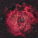 NGC2237 - Rosette Nebula,                                Ahmet Kale