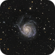 M101,                                jelisa