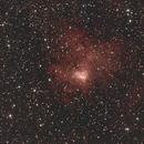 NGC 1491,                                Robin Clark - EAA imager