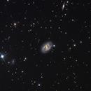 NGC 2523,                                Tom Harrison