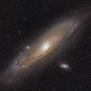 M31 - First light with 2600MC / RASA 8,                                Tristan Campbell