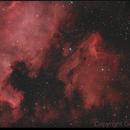 NGC 7000 and Neighborhood,                                Alexander Laue