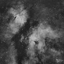 IC1318 H-Alpha,                                Sergio Alessandrelli