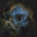 Rosette Nebula in Hubble Palette,                                Abduallah Asiri
