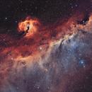 Ic 2177- la nébuleuse de la mouette HOO,                                astromat89