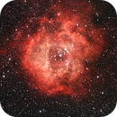 Rosette Nebula,                                Jason Kaufman