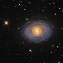 NGC 1398, galaxy in Fornax,                                José Joaquín Pérez