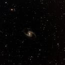 NGC 1365,                                Robin Clark - EAA imager