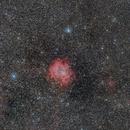 NGC2237,                                Armel FAUVEAU