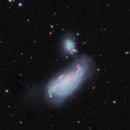 NGC 4490 The Cocoon Galaxy HaLRGB,                                Ron Stanley