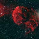 IC 443,                                David Johnson