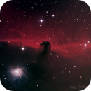 Horsehead Nebula in Orion,                                Hap Griffin