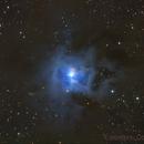 Iris Nebula ( NGC7023),                                Serge