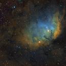 SH2-101 the Tulip nebula,                                Irving Pieters