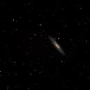 Sculptor Galaxy,                                HaydenAstro(NZ)