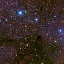 IC1396 Elephant Trunk,                                Jerry Macon