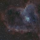 Heart Nebula,                                Başak Demirel
