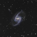 NGC 1365,                                Mark