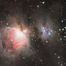 Orion Nebula,                                Steed Yu