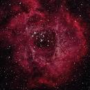 Rosette Nebula,                                Rick Gaps