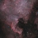 North American Nebula NGC 7000 OSC,                                Brandon Tackett