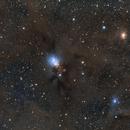 NGC 1333 Reflection Nebula in Perseus,                                Jarrett Trezzo