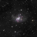 The Topsy Turvy Galaxy NGC1313 Dancing in the IFN,                                TWFowler